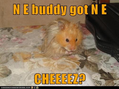 N E buddy got N E  CHEEEEZ?