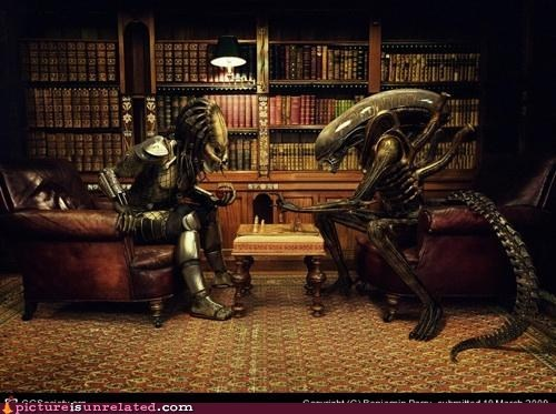 alien vs predator,chess,sir,wtf