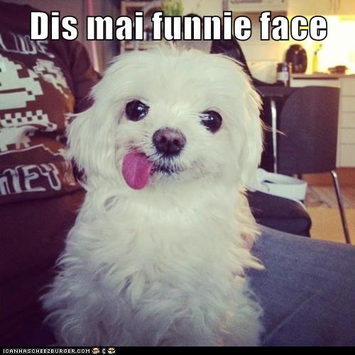 Dis mai funnie face