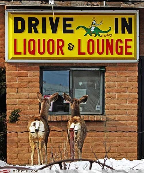 beer,deers,drive thru,liquor,lounge