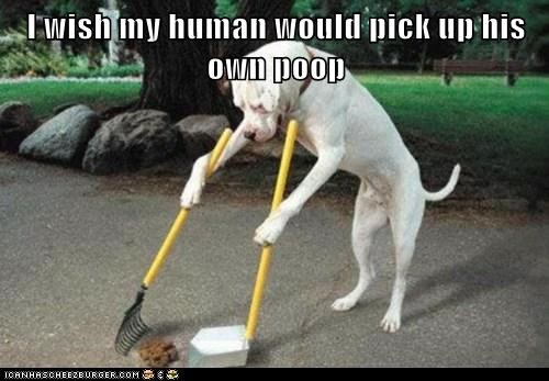 I wish my human would pick up his own poop