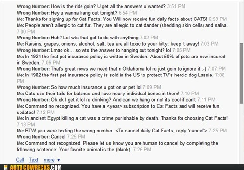 cat facts,Cats,prank,trolling,wrong number