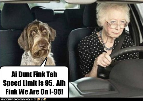 Ai Dunt Fink Teh Speed Limit Is 95,  Aih Fink We Are On I-95!