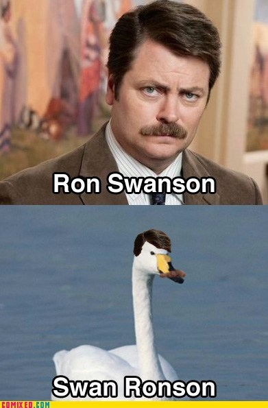 mustache,parks and recreation,ron swanson,TV