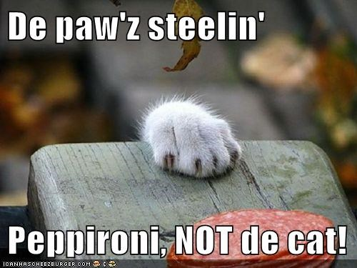 De paw'z steelin'   Peppironi, NOT de cat!