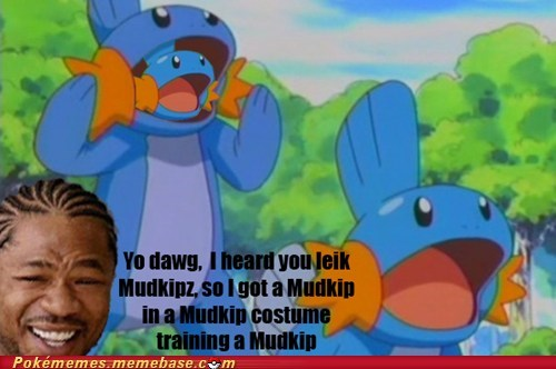 Yo Dawg, I Herd You Liek Mudkipz