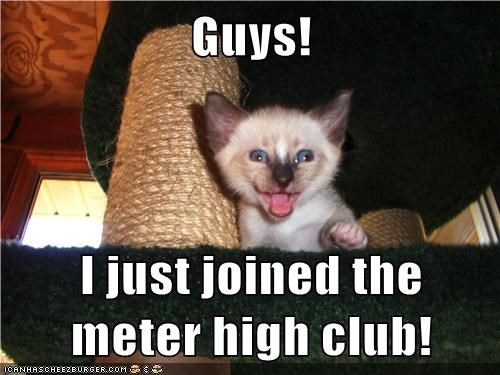 Guys!  I just joined the meter high club!