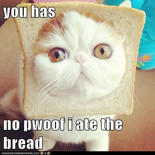 you has  no pwoof i ate the bread