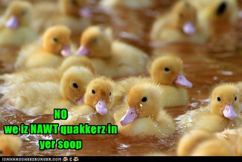 bad joke,crackers,ducklings,heard,no,puns,quackers,unoriginal