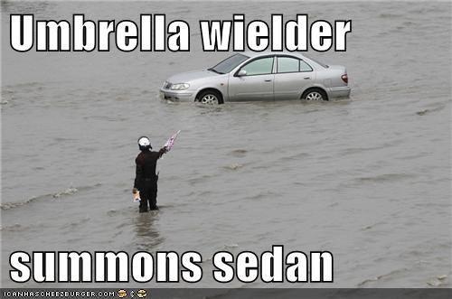Umbrella wielder  summons sedan