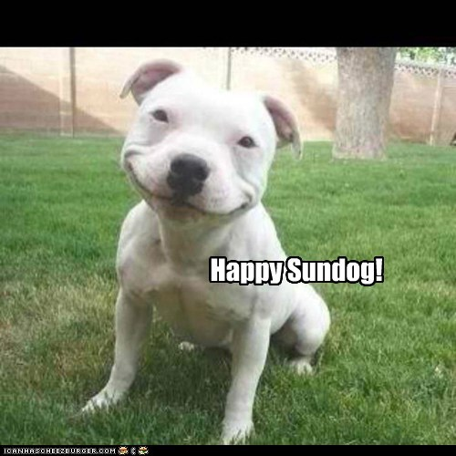 Everybody Smile it's Sundog!