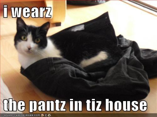 i wearz   the pantz in tiz house
