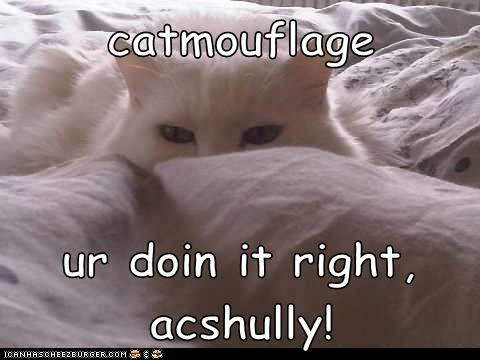 catmouflage  ur doin it right, acshully!