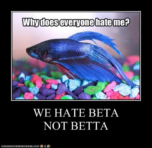 WE HATE BETA  NOT BETTA