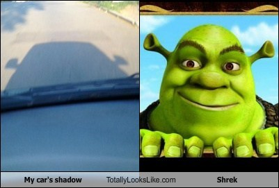 My car's shadow Totally Looks Like Shrek