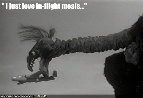 airplanes,bird,flight,meals,puppet,the giant claw