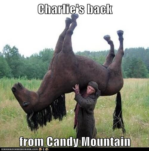 candy mountain,charilie the unicorn,Memes,shun