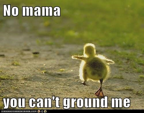 No mama  you can't ground me