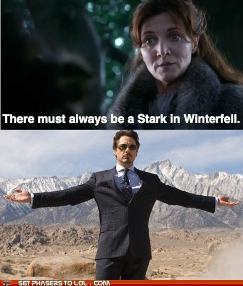 best of the week,catelyn stark,iron man,michelle fairley a song of ice and fire,robert downey jr,tony stark,winterfell