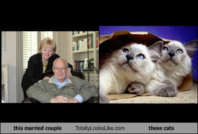 this married couple Totally Looks Like these cats