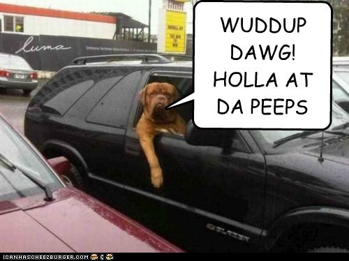 WUDDUP DAWG! HOLLA AT DA PEEPS