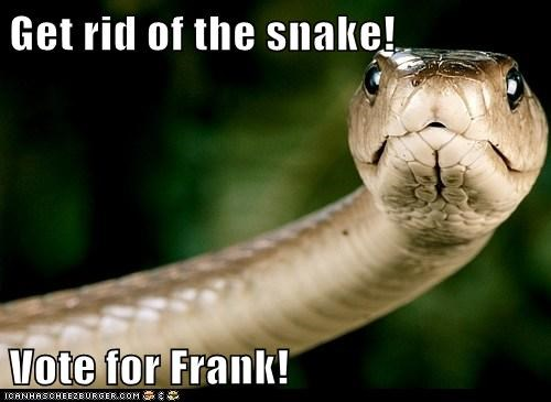 Get rid of the snake!  Vote for Frank!