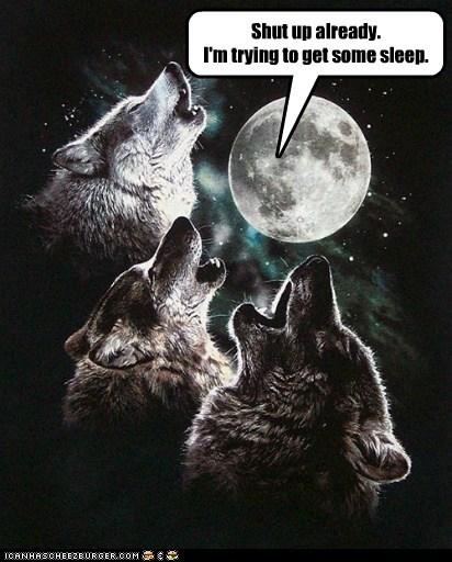 annoyed,howling,shut up,sleep,three wolf moon,trying,wolf shirt,wolves
