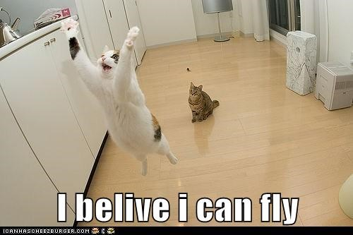 I belive i can fly