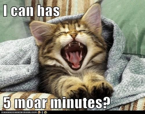 I can has  5 moar minutes?