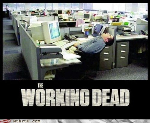 carl,carls-not-in-the-house,cubicle,The Walking Dead,the working dead