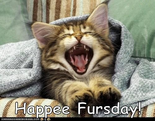 Happee Fursday!
