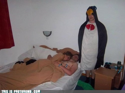 Chillin' Like a Penguin