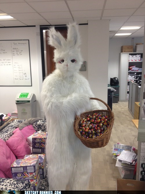 THis Office-Buny Is Spreading the Joys of Diabetes