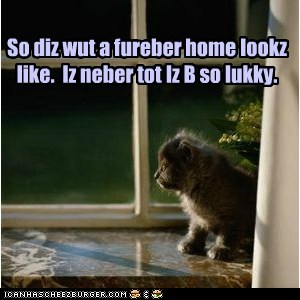 So diz wut a fureber home lookz like.  Iz neber tot Iz B so lukky.