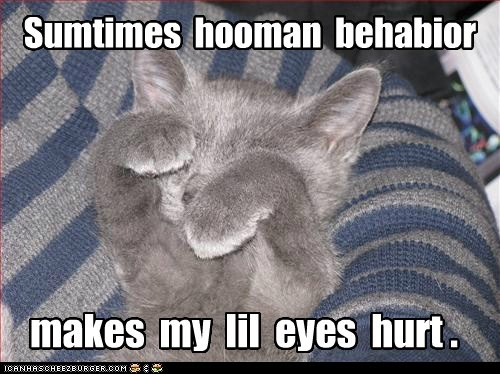 Sumtimes  hooman  behabior