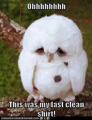 bad day,best of the week,clean,Hall of Fame,ink,last,Owl,owls,Sad,shirt,shirts,spill,spills,work