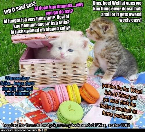 Happi Yeaster one an all, frum de majik itteh bitteh kittehs