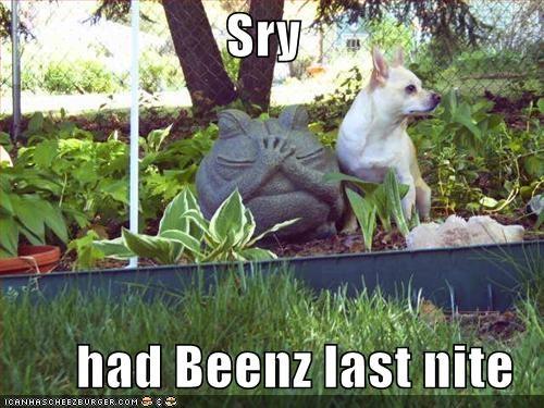 Sry  had Beenz last nite
