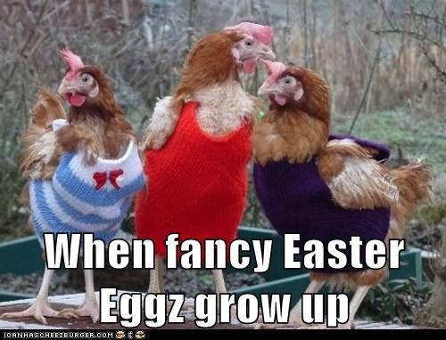 When fancy Easter Eggz grow up