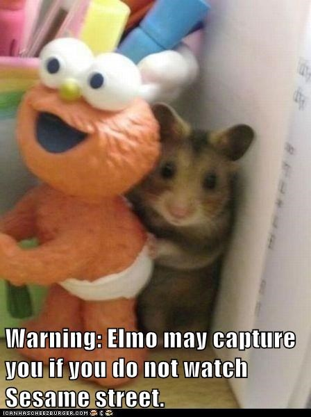 Warning: Elmo may capture you if you do not watch Sesame street.