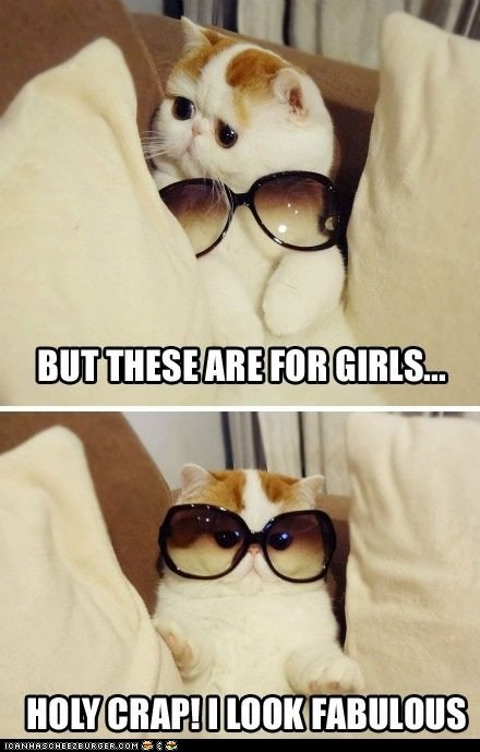 You Rock That Androgynous Style, Kitteh!