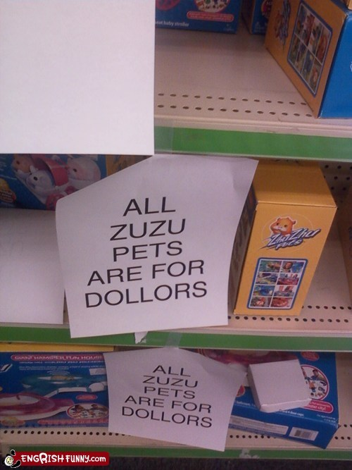 dollors,four dollars,pets,zuzu