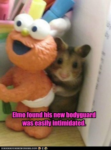 Elmo Needs a Badass Ferret
