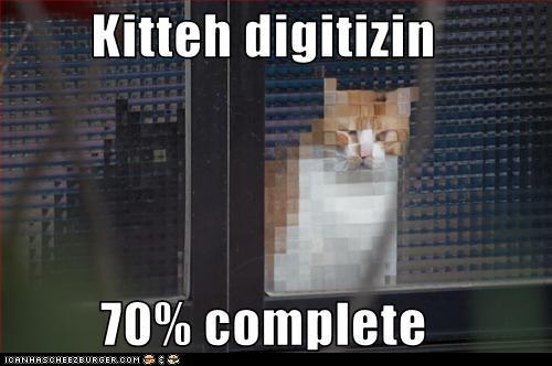 Classic LOLcat