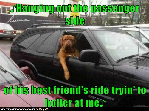 ♪Hanging out the passenger side   of his best friend's ride tryin' to holler at me♪