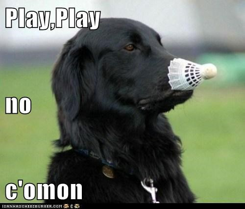 Play,Play no c'omon