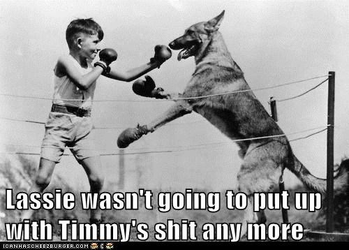 Lassie wasn't going to put up with Timmy's shit any more