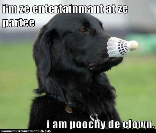 i'm ze entertainmant at ze partee  i am poochy de clown.