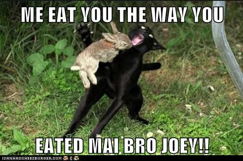 ME EAT YOU THE WAY YOU  EATED MAI BRO JOEY!!