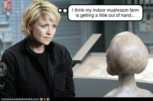 alien,amanda tapping,decoration,mushroom,out of hand,samantha carter,sg-1,Stargate